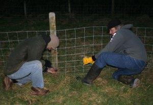 m-p-fence