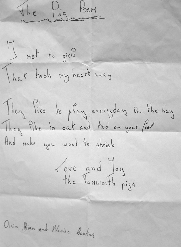 the-pig-poem-15-7-09